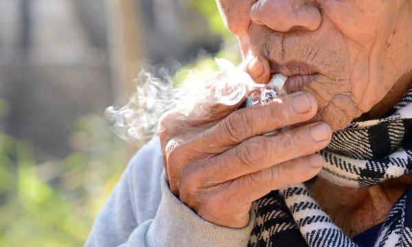Is Cannabis safe for seniors